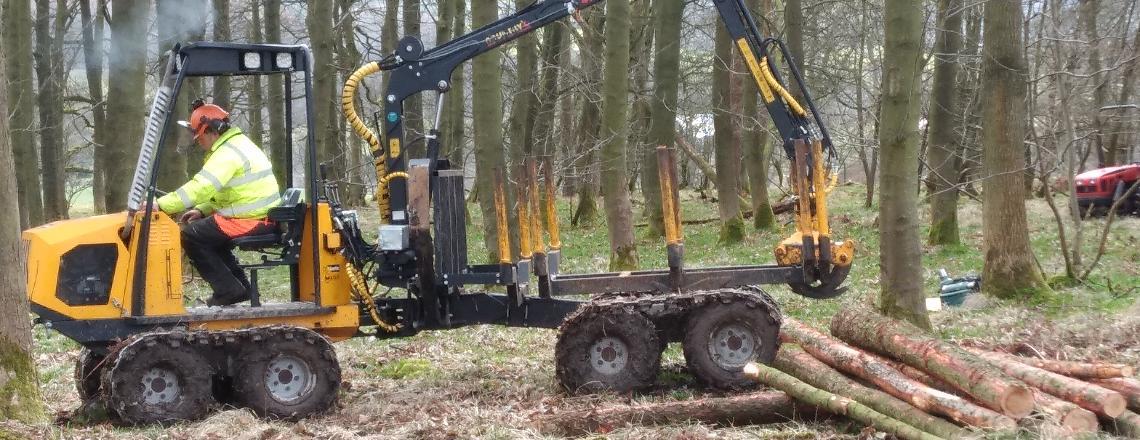 Managing woods